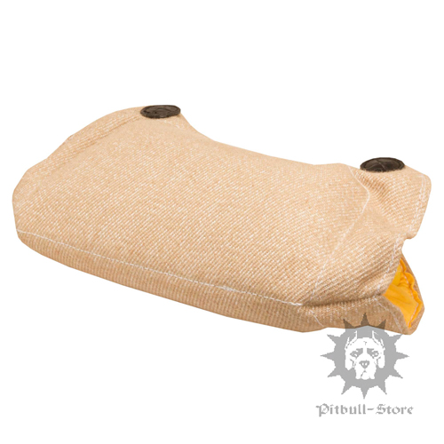Dog Biting Training Pad
