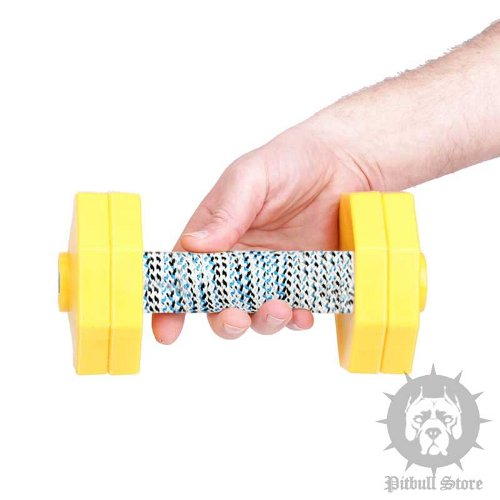 Dog Obedience Dumbbell Retrieve