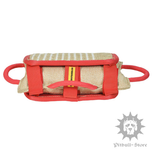 Dog Training Pad