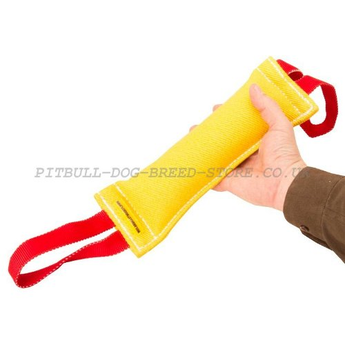 Puppy Dog Tug Tool