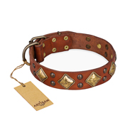 """Flight of Fancy"" FDT Artisan English Bull Terrier Collar in Tan"