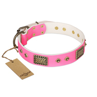 "Girl Dog Collar for Pitbull ""Frenzy Candy"" FDT Artisan"