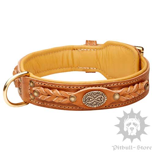 Royal Dog Collar UK