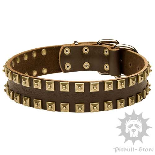 Large Dog Collar UK