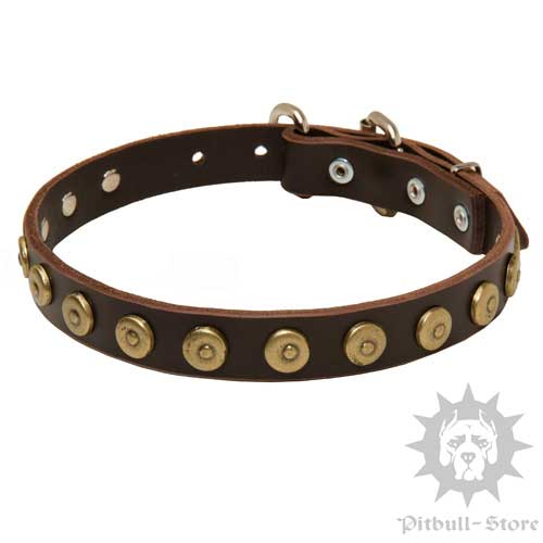 Stylish Dog Collar with Studded Decoration for Amstaff