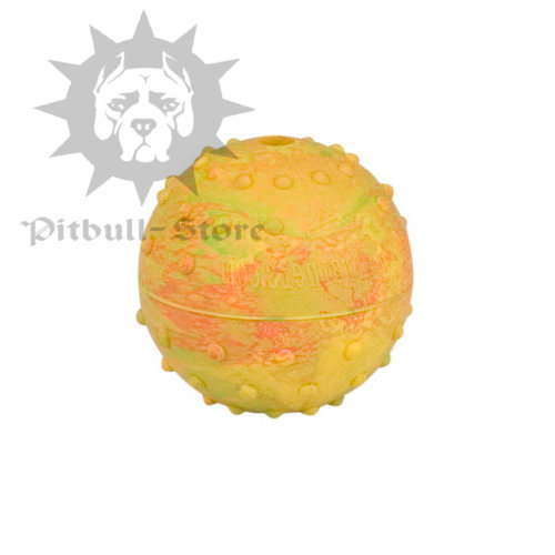 "2.3"" Dog Toy Ball with a Bell Inside for Staffy and Pitbul"