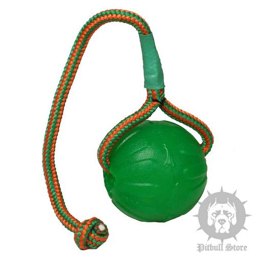 Dog Chew Ball, Indestructible Toy on Strong Rope for Staffy