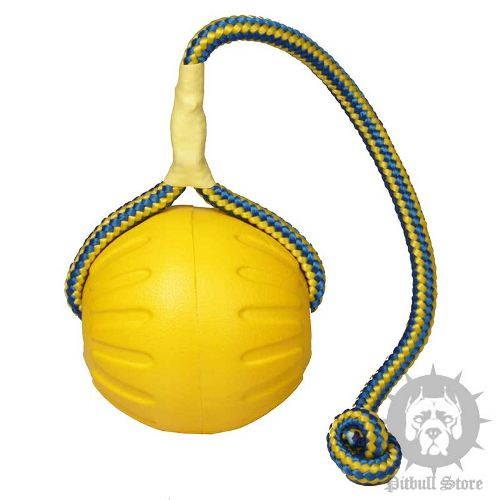 Foam Dog Ball Toy on Rope for Staffy and Pitbull Training