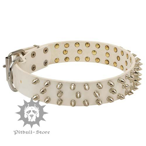 White Dog Collar with Spikes of Fashion Design for Staffy