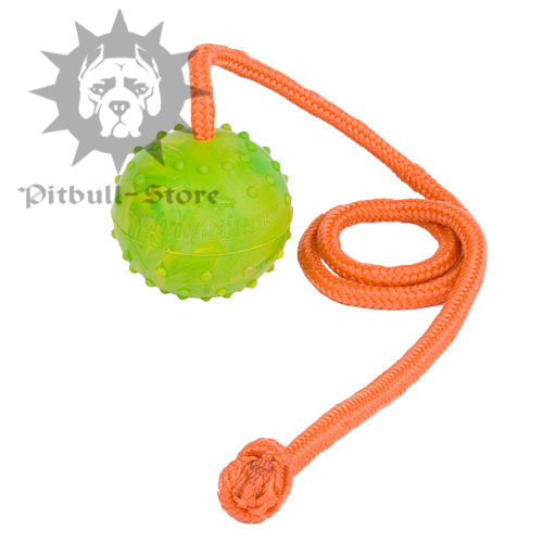 Bestseller! Funny Training Solid Rubber Ball for Pitbull