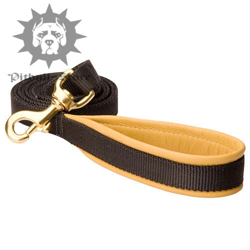 Nylon Handle Padded Dog Lead for Pitbull and Staffy