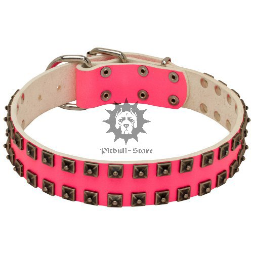 "Fancy Style Pink Leather Dog Collar for Stafford ""Caterpillar"""