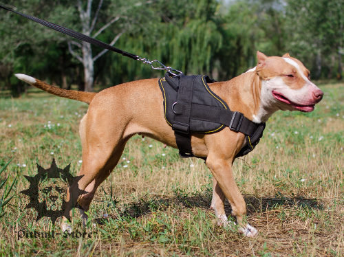 Dog sport harness nylon for Pitbull training