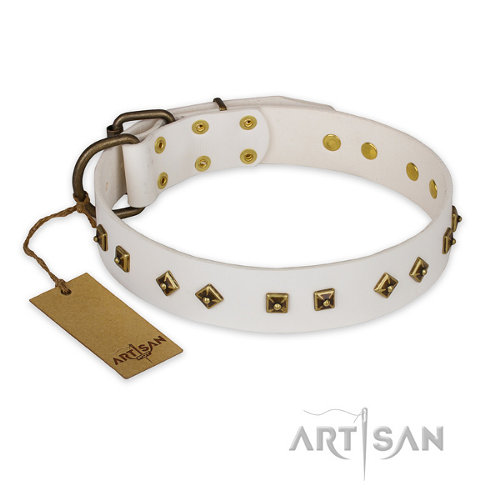 "American Staffordshire Collar ""Snow Cloud"" Artisan"