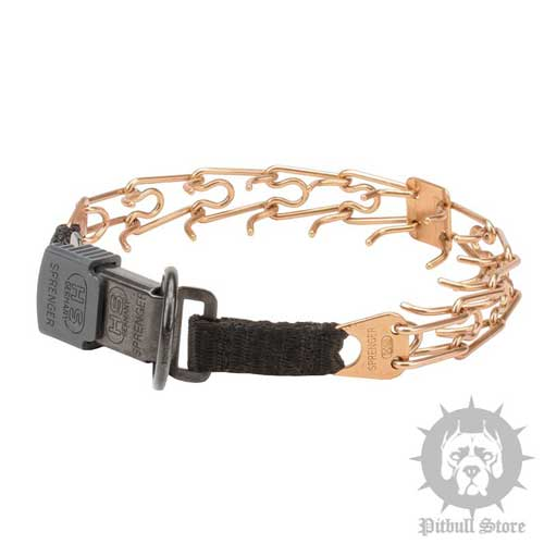 Curogan Pinch Dog Collar with Click Lock Buckle