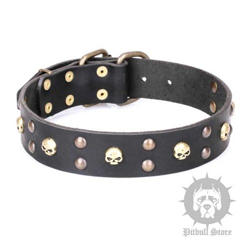 "Artisan Dog Collar FDT ""Heavy Metal"" Leather with Skulls, Studs"