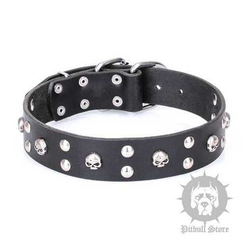 "Artisan Dog Collar FDT ""Mystic Skulls"" with Round Studs, Leather"