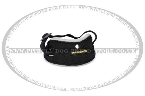 Best Dog Training Pouch Arm Pocket for Attention Development