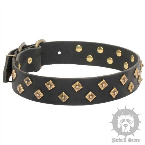 "Designer Dog Collar ""Majestic Pyramids"" for Amstaff, Pitbull"