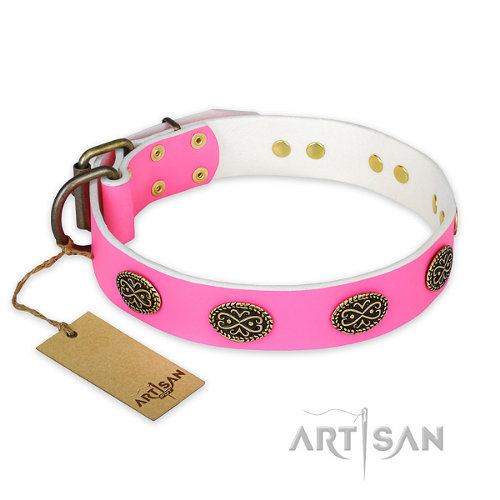 "Dog Collar for Female Pitbull ""Forever Fashion"" FDT Artisan - Click Image to Close"