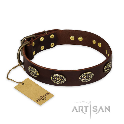 "Dog Collar for Pitbull ""Chocolate Kiss"" FDT Artisan"