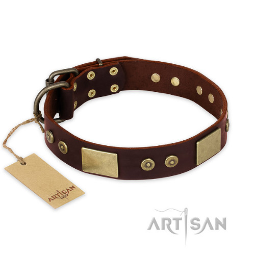 "Dog Collar for Pitbulls ""Shining Armour"" FDT Artisan"