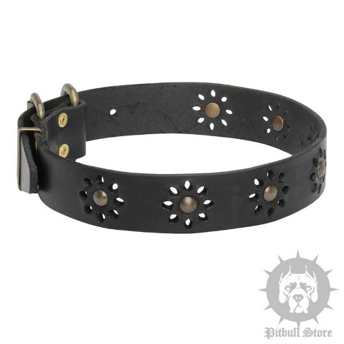Leather Dog Collar Flowers, Cute Spring Style for Amstaff