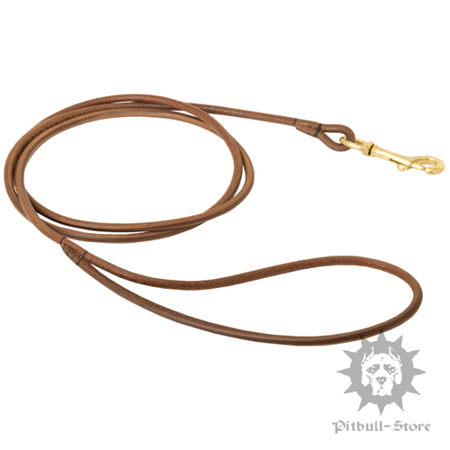 Dog Show Lead or Round Leather - 1/5 Inch Wide