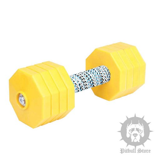 Dog Training Dumbbell with 8 Yellow Plastic Weight Plates, 2 kg
