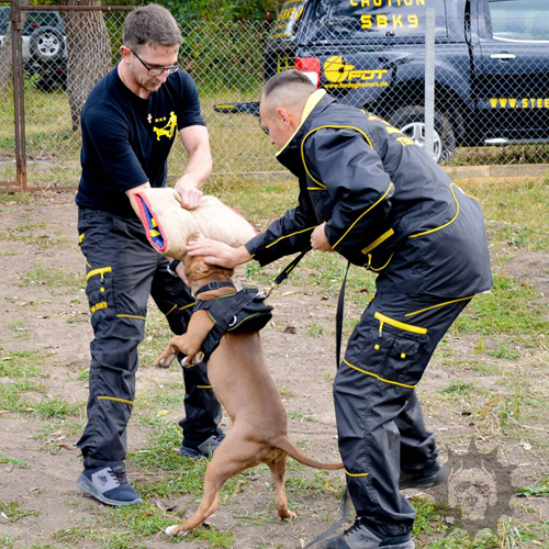 Police Dog Training Suit in Black with Numerous Pockets