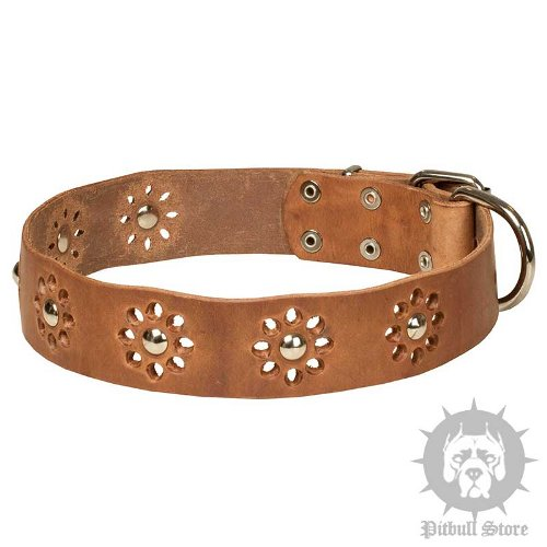 Flower Dog Collar with Camomiles for Amstaff, Spring Design