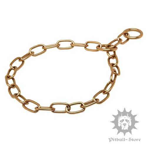 Stylish Chain Collar for Staffordhire Bull Terrier