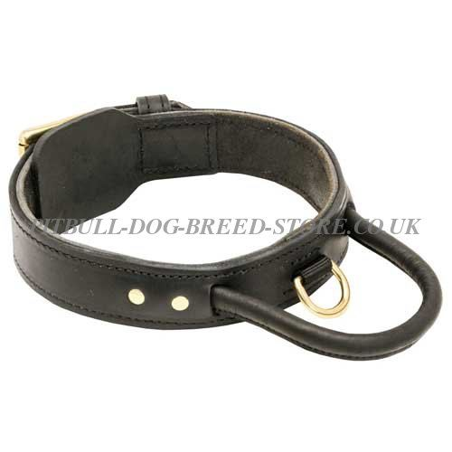 Leather Agitation Dog Collar with Handle for Pitbull Training