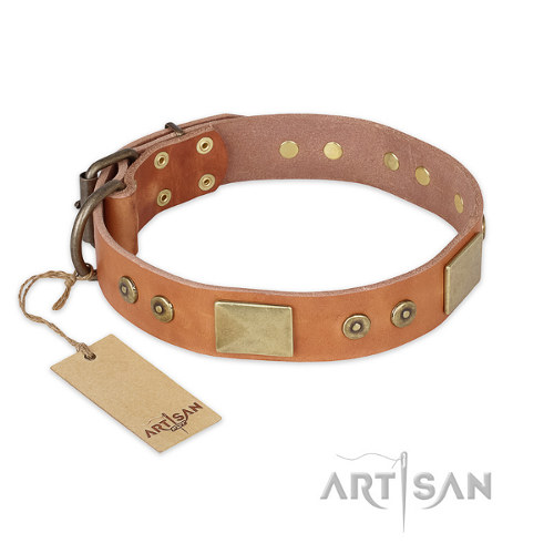 "Leather Collar for Pitbull ""The Middle Ages"" FDT Artisan"