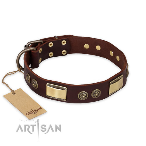 "Leather Dog Collar for Pitbull ""Golden Stones"" FDT Artisan"