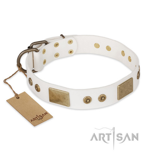 "Leather Pitbull Collar Artisan ""Unforgettable Impress"""