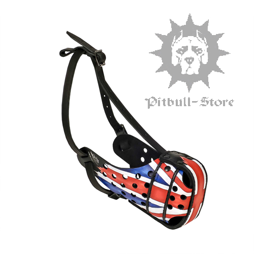 UK Style Painted Dog Muzzle for Daily Activities