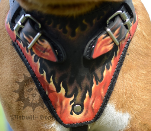 Pitbull Harness with Handle and Cool Flame Design