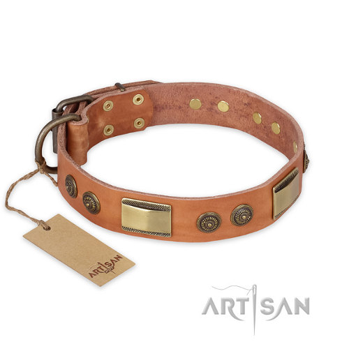 "Pitbull Leather Dog Collar FDT Artisan ""Lost Dessert"" - Click Image to Close"