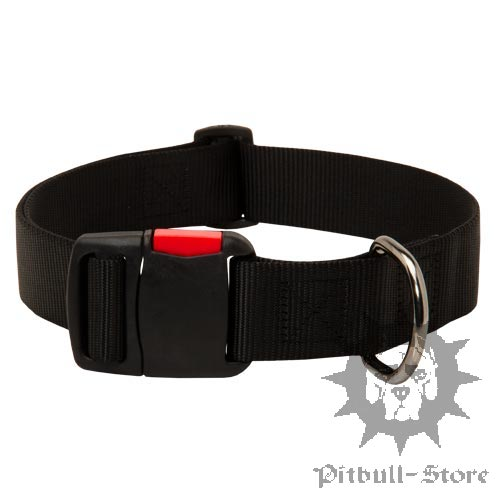 Excellent Quick Release Dog Collar of Strong Nylon