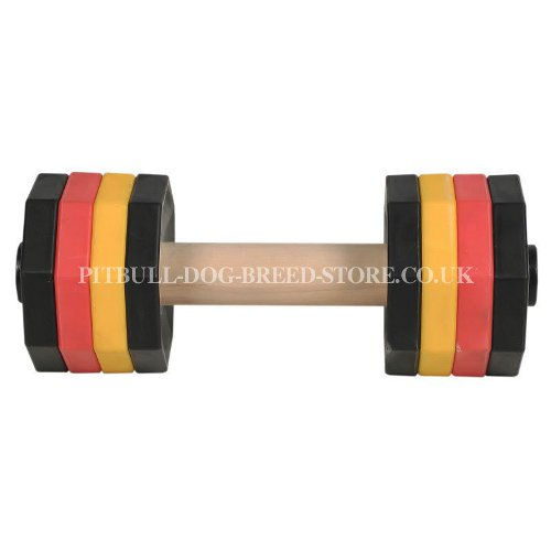 IGP Dog Dumbbell 2 kg, 8 Colorful Weight Plates for Staffy