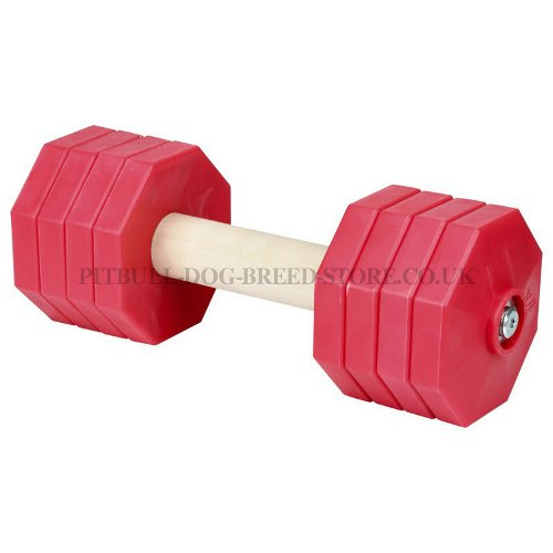 Schutzhund Dumbbell 2 Kg, 8 Removable Red Plastic Plates