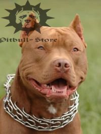 Pitbull Pinch Collar with Small Quick Release Snap Hook, 1/6""