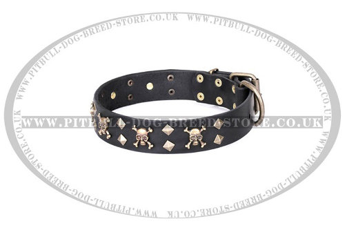 "Staffordshire Leather Dog Collar ""Jolly Rojer"" FDT Artisan"