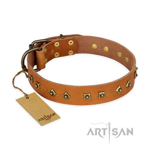 "Staffy Studded Dog Collar ""Autumn Story"" FDT Artisan"