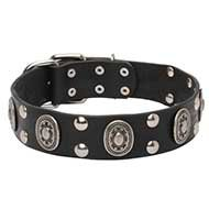 "Chic Leather Dog Collar ""Viking"" Studs Oval Plates for Amstaff"