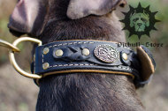 Luxury Dog Collar for Stafford | Handmade Dog Collar, UK
