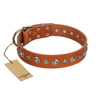 "Leather Dog Collar Pitbull ""Gorgeous Roundie"" Artisan"