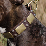 Custom Made Dog Collar of Pure Leather for Staff