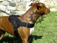 Pitbull Harness of Nylon | Dog Tracking and Pulling ❺